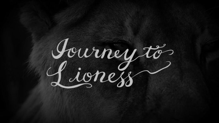 Journey to Lioness Teaser